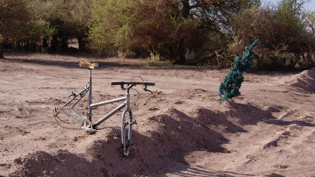 ... hukkunud jalgrattur!